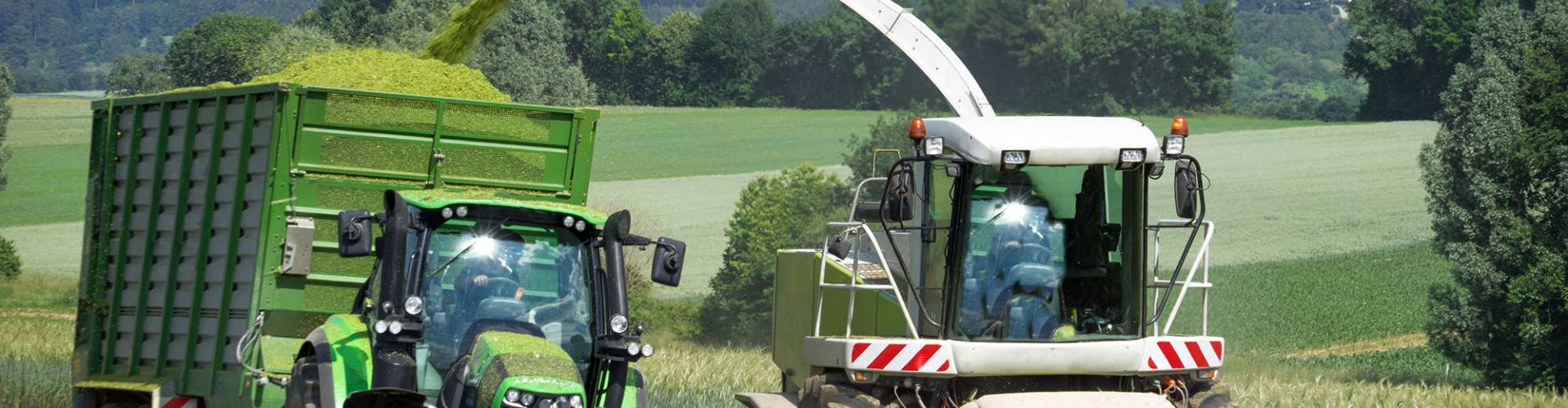 Arable Silage Mixes