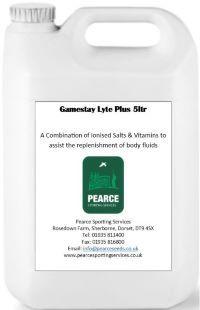 Gamestay lyte plus - electrolytes, salts and sugars